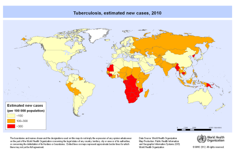 Global tb cases